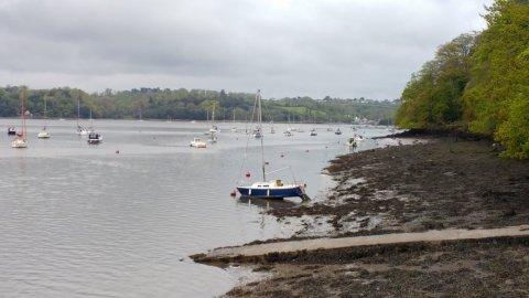 Dart Ferry 2