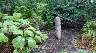 Arley Wood 4