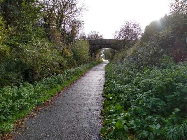 Path 6