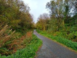 Path 7